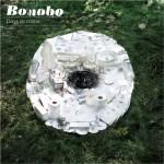 medium_bonobo.jpg