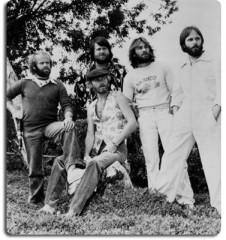 Brian Wilson,Beach Boys