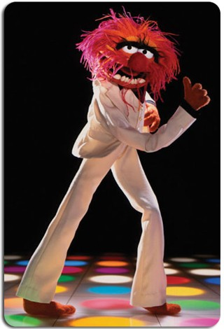 Muppets-Chauve.jpg