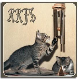 KKFS.jpg